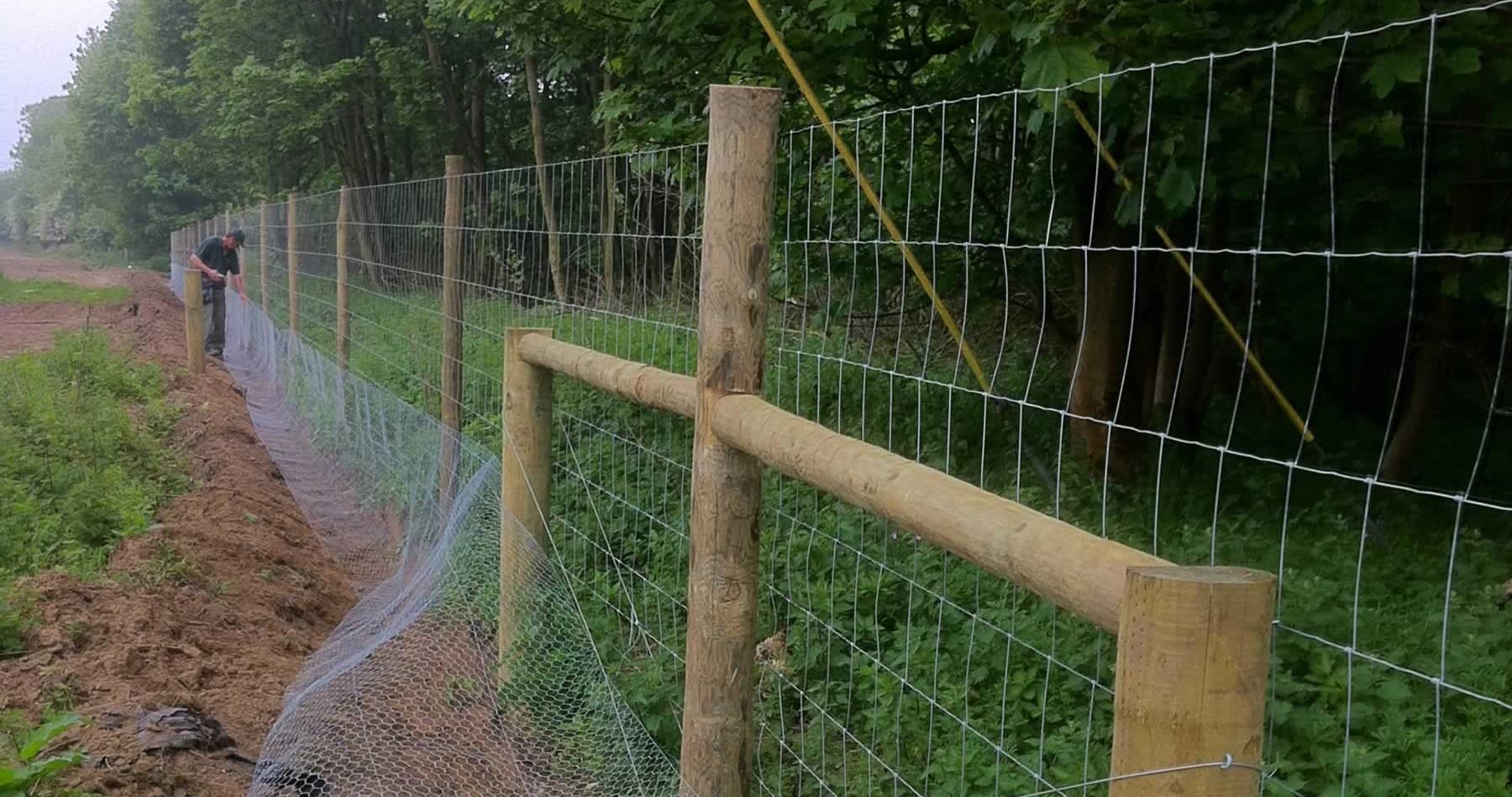 Deer forest fencing